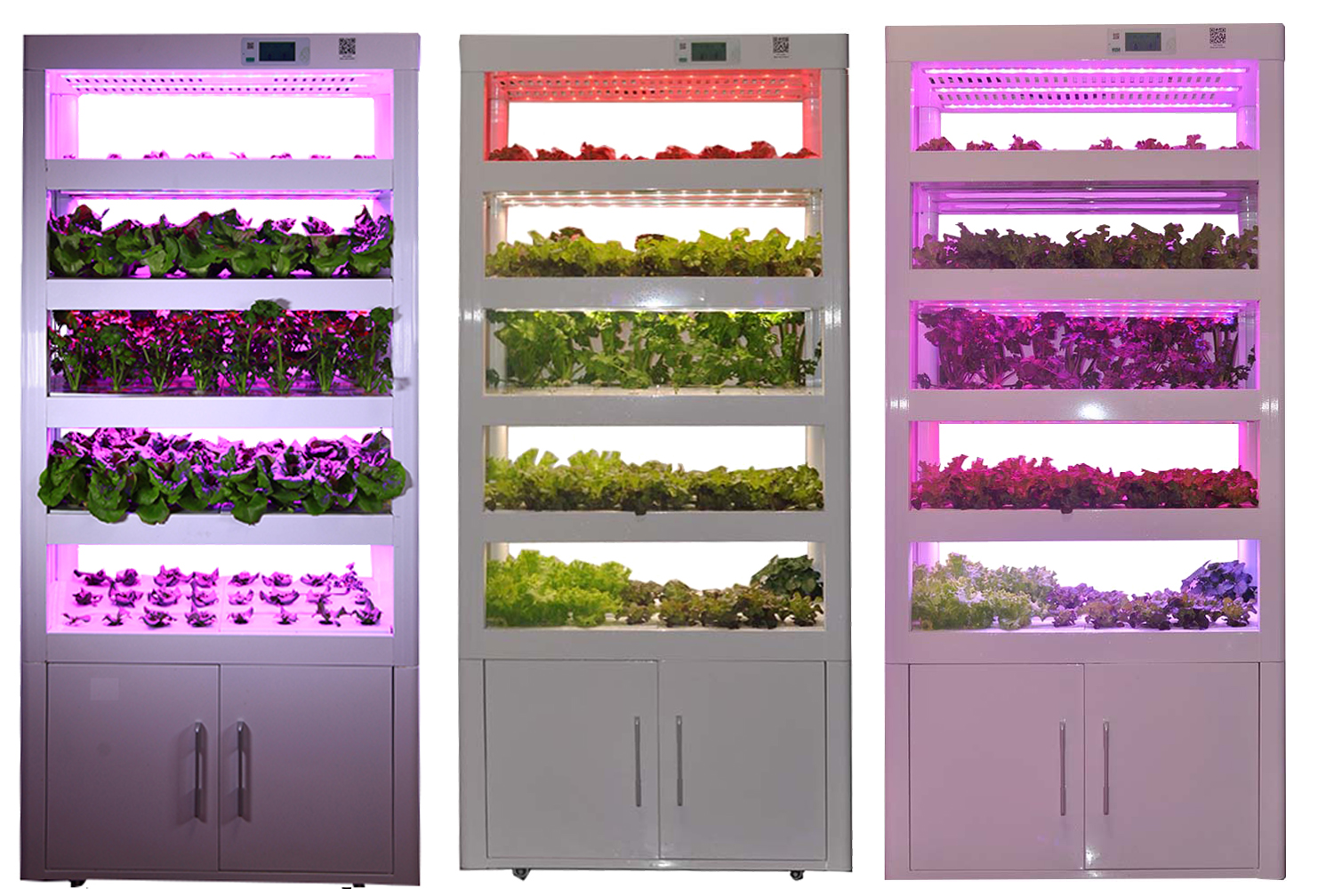 Hydroponic-Cultivator-for-Planting